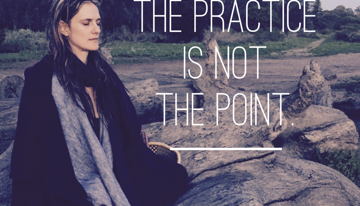 The Practice is Not the Point