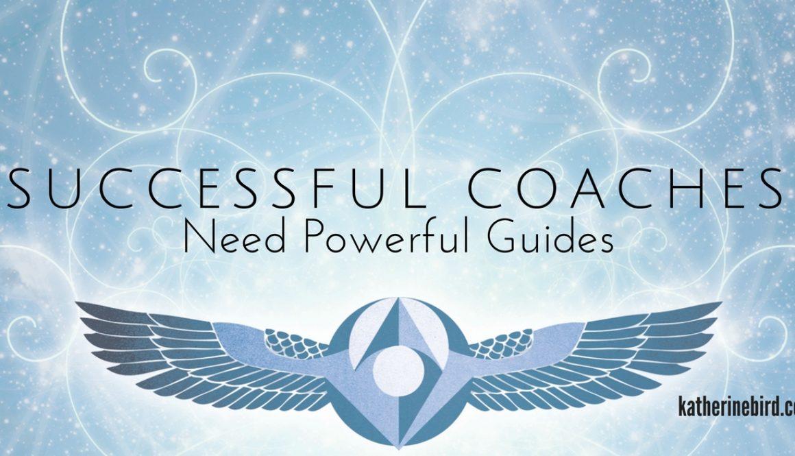 Successful Coaches in Overwhelm